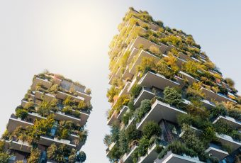 Can Vertical Forests Fight Global Warming