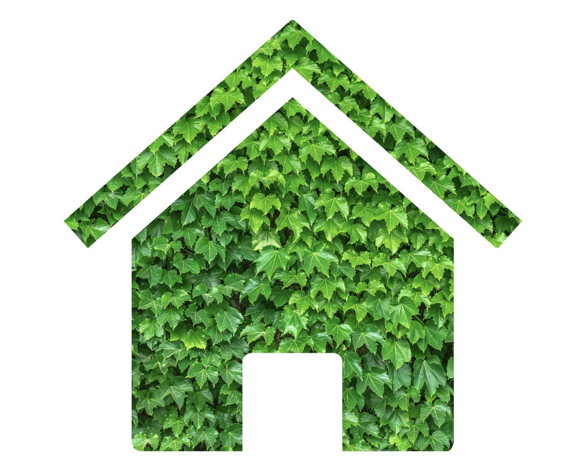 Why Greenhouses Are Beneficial For Our Environment