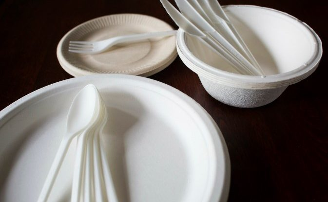 Use These Recycled Reusable Plates And Utensils For Your Next BBQ
