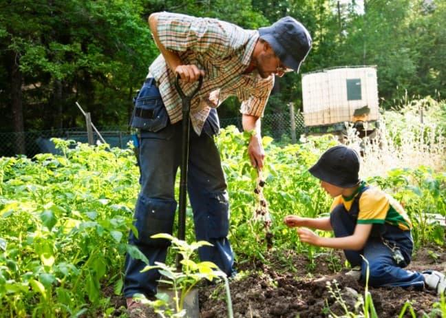 Doing Gardening